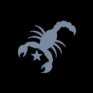 De horoscoop van het sterrenbeeld Schorpioen lees je gratis bij Paragnostenlive.nl