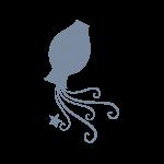 De horoscoop van het sterrenbeeld Waterman lees je gratis bij Paragnostenlive.nl